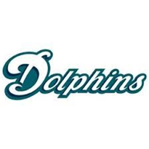 Ashburn Youth Football - Dolphins