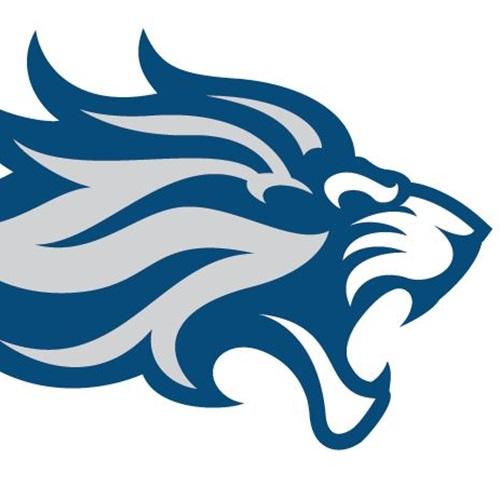 Lower Loudoun Boys Football League - Lions
