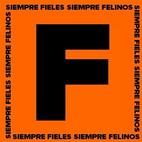 Felinos Chile FA - Felinos
