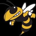 Huron River Yellow Jackets  - Varsity