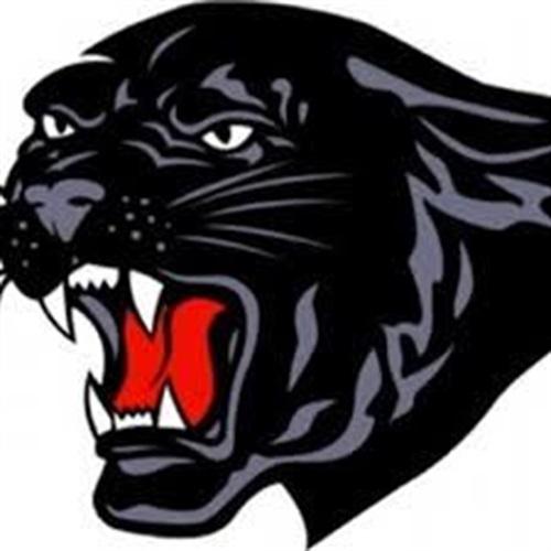 Saucon Valley High School - Girls Varsity Volleyball