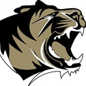 Bentonville High School - Gold
