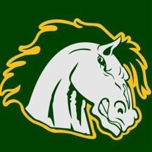 Evergreen Park Stallions- MYFL - EP Stallions Widgets