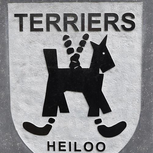 De Terriërs - Heren 1