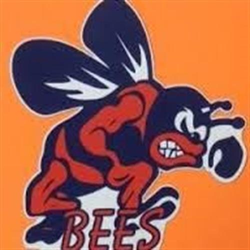 Bridgman High School - Boys' Varsity Basketball