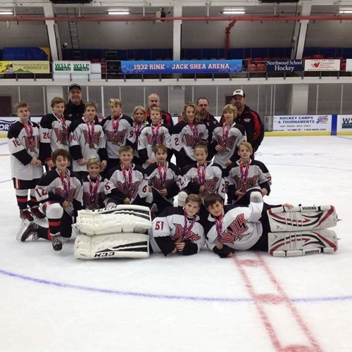 York Devils Pee Wee AA - Team Based Bronze - Ice Hockey