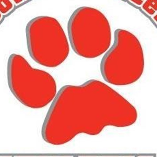 Bowling Green High School - Boys' Varsity Basketball