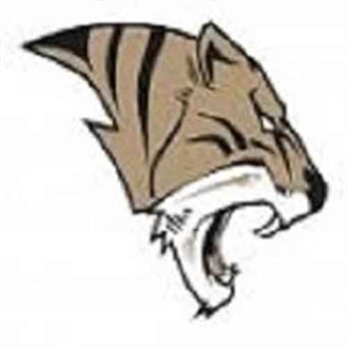 Ardmore High School - Boys' Varsity Basketball