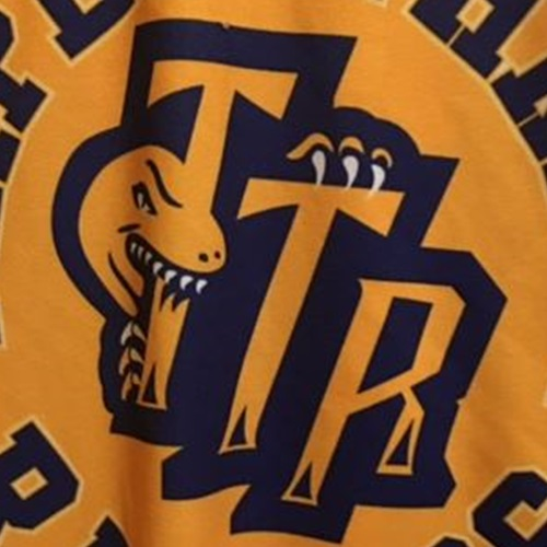 TTR - Triple Threat Raptors