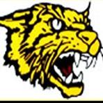 Diamond High School - Boys Basketball