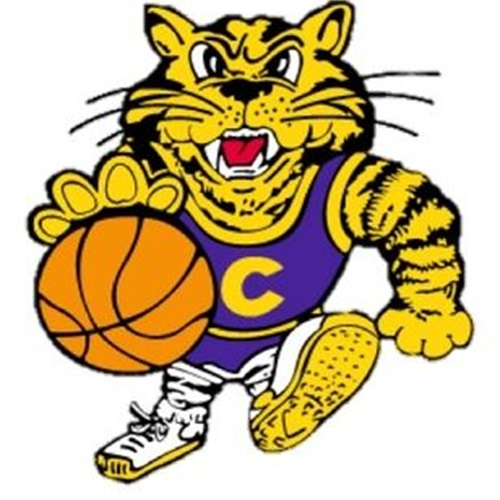 Central DeWitt Community High School - Saber Sophomore Boys Basketball
