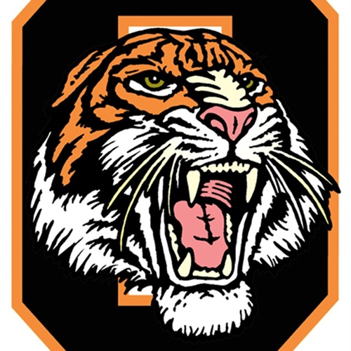 Ogden High School - Boys Varsity Football