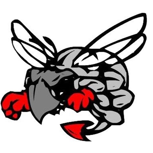 Hilldale High School - Boys Varsity Football