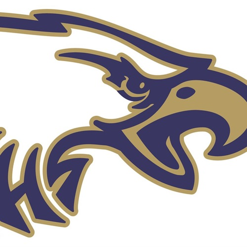 North Florida Educational Institute High School - Boys' Varsity Football