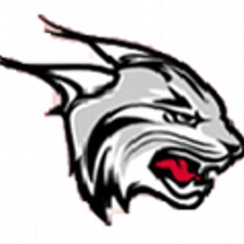Brandon Valley High School - Girls Varsity Basketball