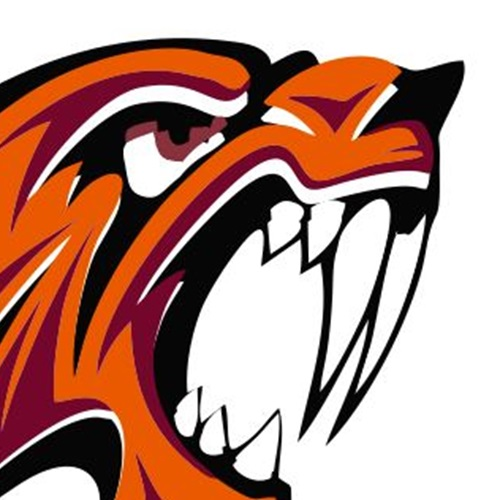 Canistota/Freeman High School - Canistota Varsity Football