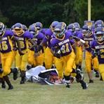 Wilson High School - Wilson Football