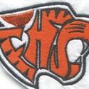 Farmington High School - Farmington Varsity Ice Hockey