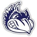 Menasha High School - Menasha Boys' JV Basketball