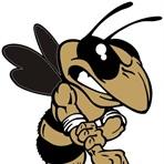 Wayne County High School - Boys Varsity Football