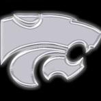 Quinlan Ford High School - JV Blue Team Football
