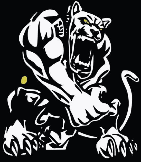 Glenbard North High School - Wrestling