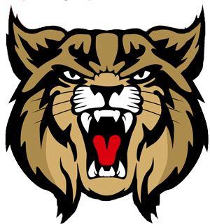 Brookings High School - Boys Varsity Wrestling
