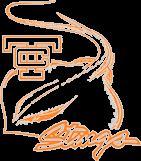 Texas City High School - Boys Varsity Football