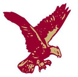Rib Lake-Prentice High School - RLP Football