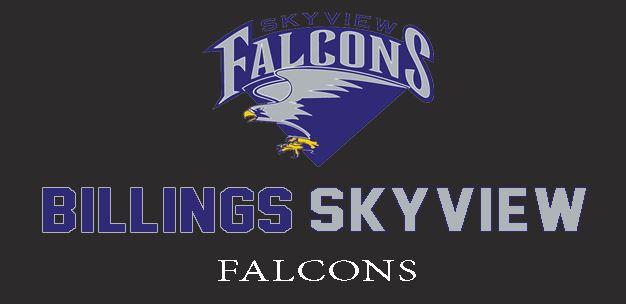 Skyview High School - Girls Varsity Basketball