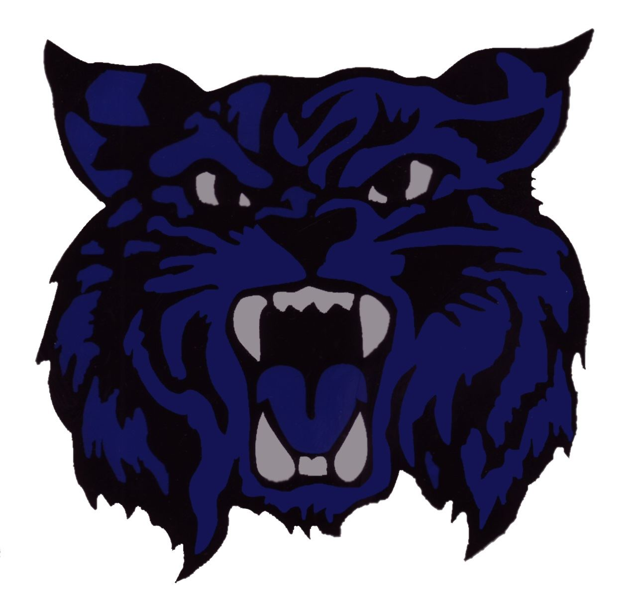 Fairfield Wildcats Football - Fairfield Junior 6th Black