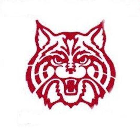 St. Joseph High School - Wildcat Varsity Football