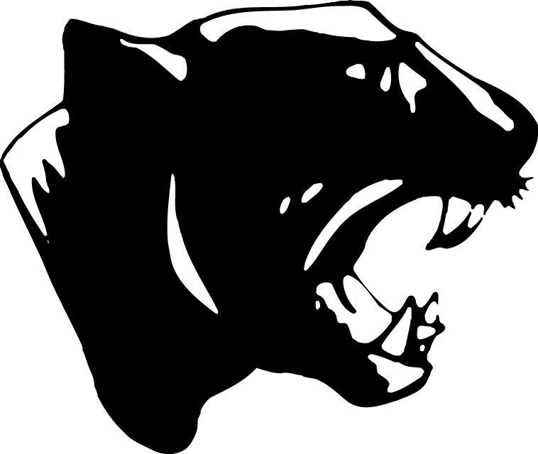 Platt High School - Boys Varsity Football