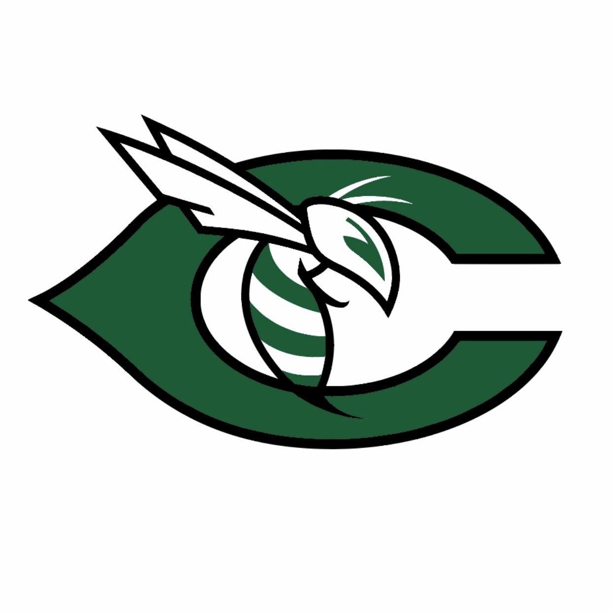 Carter High School - Carter Hornets