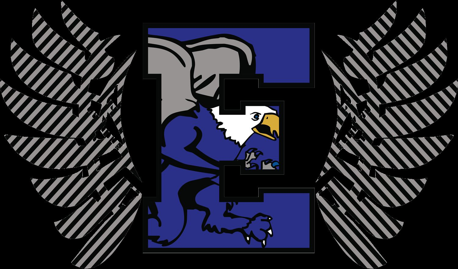 Lincoln-Way East High School - Boys Varsity Football