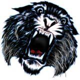 Cedar Bluffs High School - Boys Varsity Football
