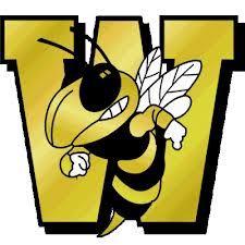 Wasatch Wasps - Wasatch Varsity Basketball