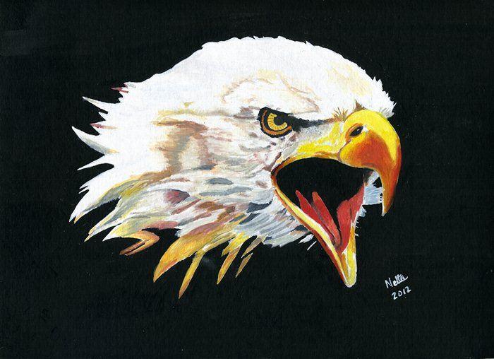 Lewiston-Altura - LARP Screamin' Eagles