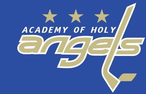 Academy of Holy Angels High School - Varsity Boy's Hockey