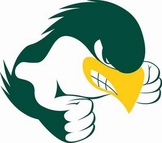 St. Albert High School - Falcons