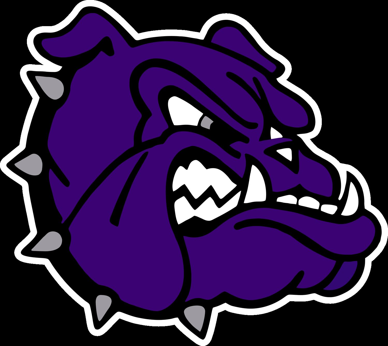 Fayetteville High School - Purple