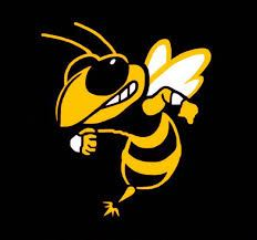 Williamsburg Hornets - Gold Midgets