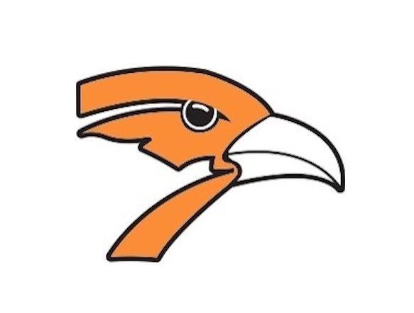 Springville High School - Boys Varsity Basketball