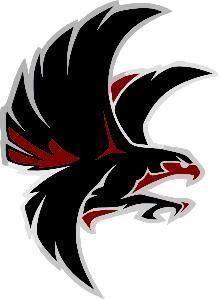 Lincoln Falcons - Falcons
