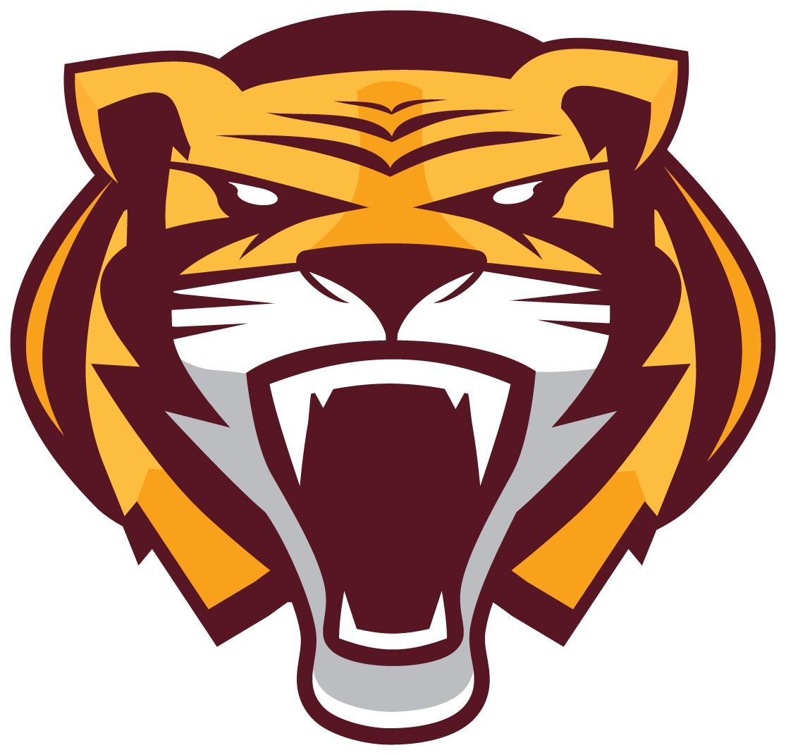 Stewartville High School - Boys Varsity Football