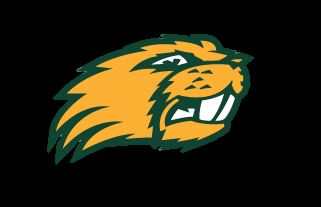 Beaver Dam High School - Beaver Dam JV Football