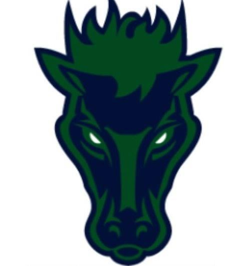 Damonte Ranch- SYFL - SYFL Collegiate Mustangs