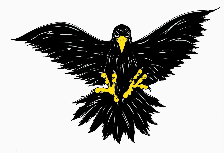 Pettisville High School - Boys' Varsity Basketball