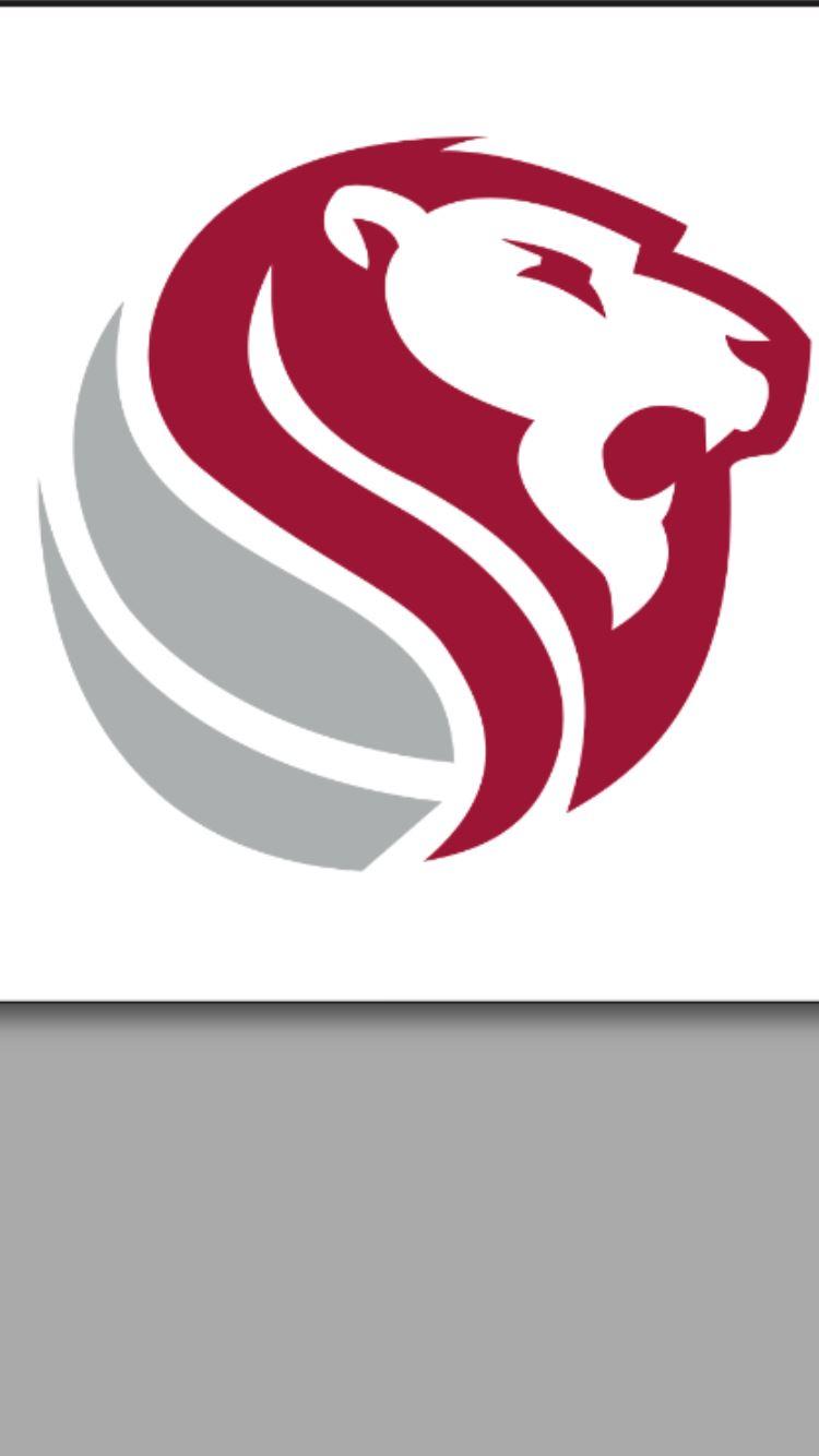 Haleyville High School - Varsity Boys Basketball