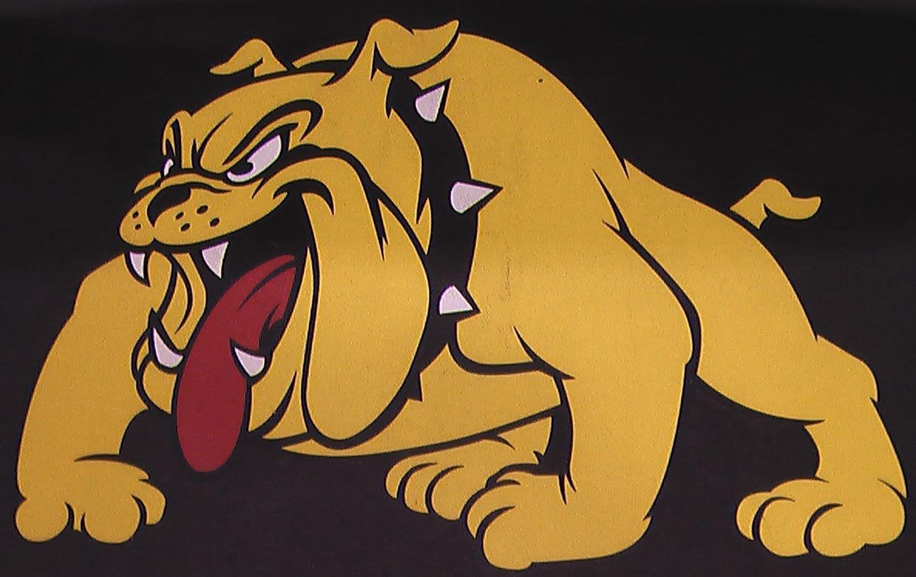 Bettendorf High School - Bettendorf Sophomore